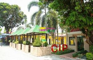 CIP语言学校